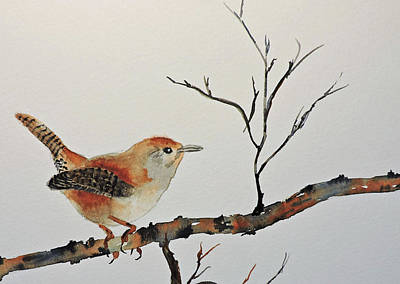 Painting - Winter Wren by Carol Bruno