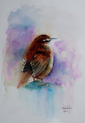 Tribute Drawing - Winter Wren by Isabel Salvador