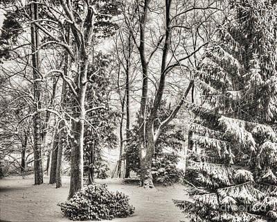 Winter Sepia Scene Digital Art - Winter Zauber 03 by Edmund Nagele