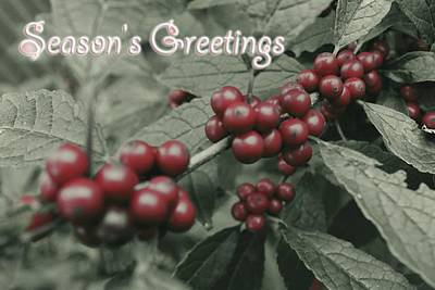 Winterberry Greetings Art Print by Photographic Arts And Design Studio