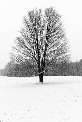 Catskills Photograph - Winterclove by Rick Berk