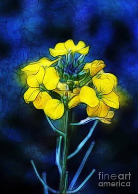Wintercress Art Print by Judi Bagwell