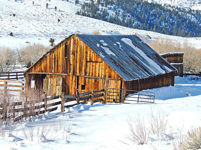 Wintering Range Barn Art Print