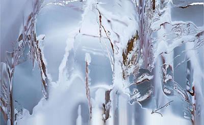 Painting - Winterland by Kume Bryant