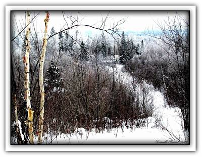 Art Print featuring the photograph Winterlude by Danielle  Parent