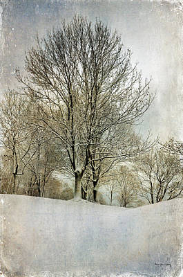 Photograph - Winterly Peace by Randi Grace Nilsberg