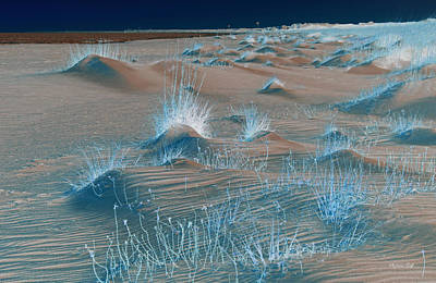 Winters Dunes IIi Original by Suzanne Gaff