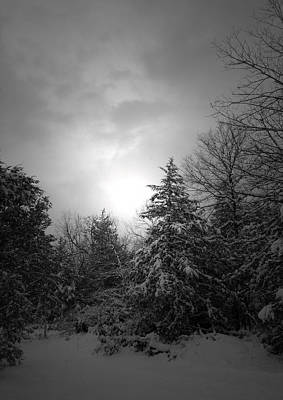 Photograph - Winter's Eve by Linda Shannon Morgan