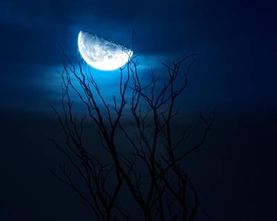 Winter Night Photograph - Winter's Eve Moon by Mark Andrew Thomas