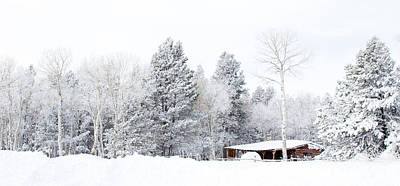 Winter's Homestead - Casper Mountain - Casper Wyoming Original by Diane Mintle