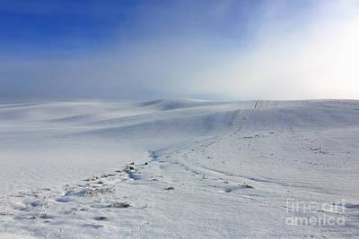 Winters Mist Art Print by Beve Brown-Clark Photography