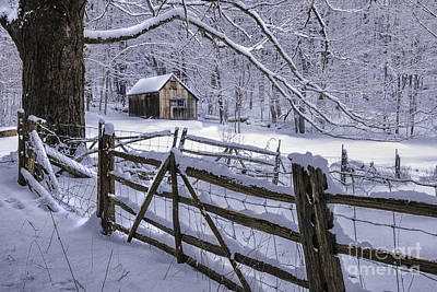 Litchfield Hills Photograph - Winter's Mystique   by Thomas Schoeller