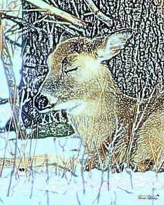 Winter's Nap Art Print by Torie Tiffany