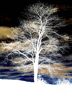 Frost Mixed Media - Winter's Night Sky by Janine Riley