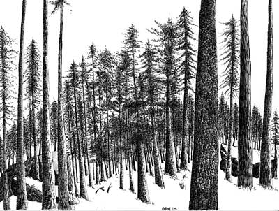 Snowscape Drawing - Winter's Passage I by Rahul Jain