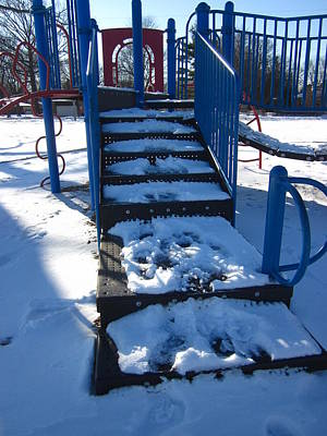 Photograph - Winter's Playground by Guy Ricketts
