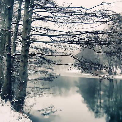 Snow Digital Art - Winter's Reach by Jessica Jenney