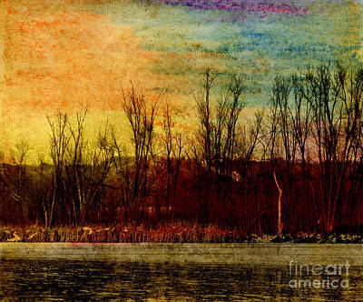 Winter's Shore Art Print