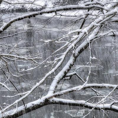 Winter Scene Photograph - Winter's Song by Joann Vitali