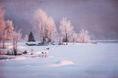 Winter's Splendor #3 - Pastels Art Print