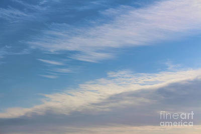 Photograph - Winter's Summer Sky by Barbara McMahon