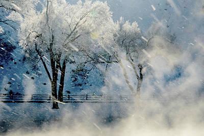 Winters Tapestry.. Art Print