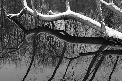 Winter's Touch Art Print by Luke Moore