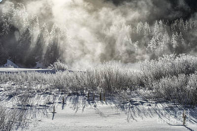 Photograph - Winter's Touch by Sandra Bronstein