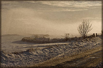 Photograph - Winter's Way by Liz  Alderdice