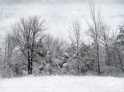 Winter's Wonder Art Print by Kathi Mirto