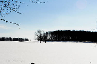 Photograph - Winterscape 2  by BandC  Photography