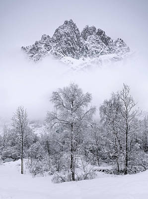 Frost Photograph - Winterscape by Arzur Michael