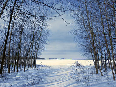 Wintertime At Sheldon Marsh Art Print