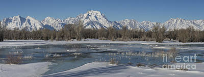 Photograph - Wintertime In The Tetons by Sandra Bronstein
