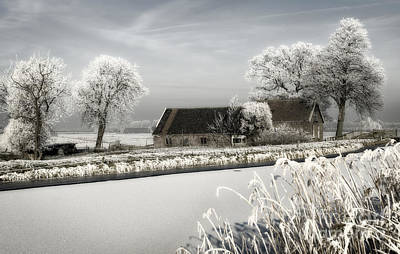 Winterwonderland Art Print by Michel Verhoef