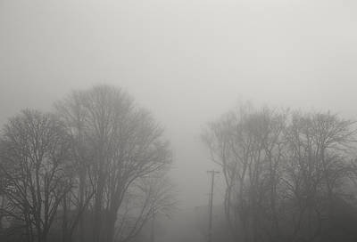 Contemplative Photograph - Wintry Dreams by Kunal Mehra
