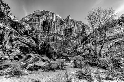 Photograph - Wintry Moutain by Christopher Holmes