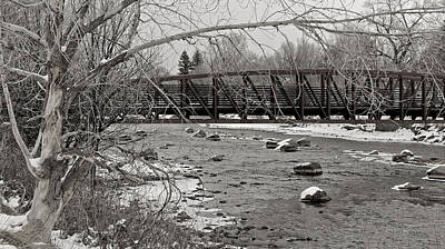 Black And White Photograph - Wintry Walk by Pam Boling