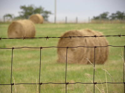 Wire And Hay Art Print by Jewels Blake Hamrick