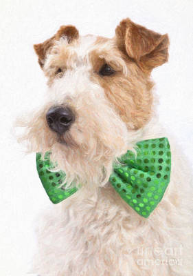 Fox Terrier Digital Art - Wire Fox Terrier With Bowtie by Verena Matthew