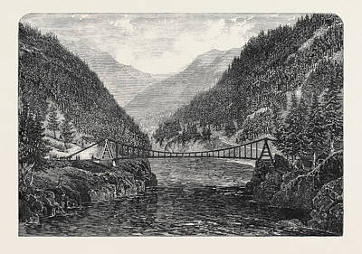 British Columbia Drawing - Wire Suspension Bridge Over The Fraser River British by English School