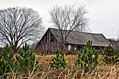 Photograph - Wisconsin Old Barn 9 by Ms Judi