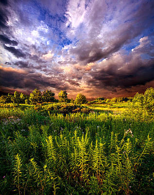Wisconsin Ventures Print by Phil Koch