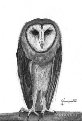 Barn Owl Drawing - Wisdom With Feathers by J Ferwerda