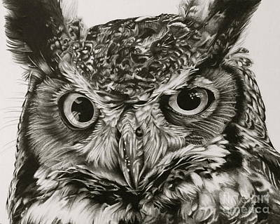 Great Horned Owl Drawing - Wise Guy by Jennifer Slack
