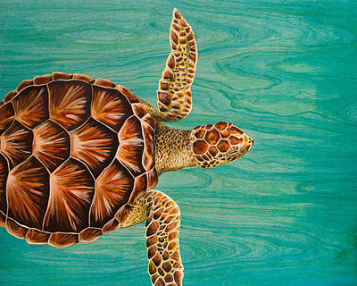 Scuba Painting - Wise Honu  by Emily Brantley