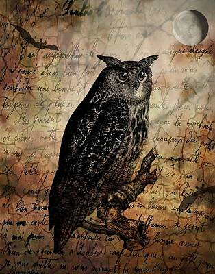 Wise Old Owl Art Print