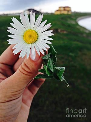 Photograph - Wish I May by Ella Kaye Dickey