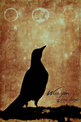 Black Birds Photograph - Wish You Were Here 1 by Carol Leigh