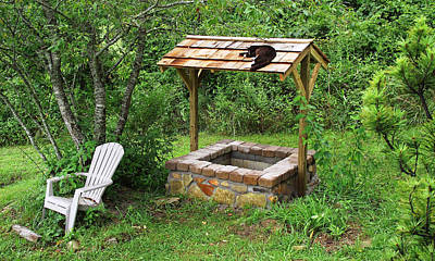 Photograph - Wishing Well And Cat by Duane McCullough